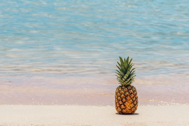 熱帯のビーチでパイナップルのクローズアップ