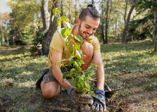 자연에 새로운 식물을 심는 것에 클로즈업