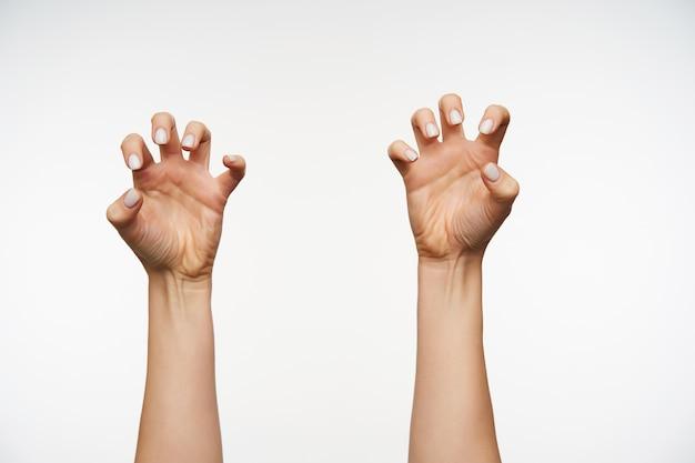 동물의 발과 발톱을 모방하는 흰색 매니큐어로 제기 손을 닫습니다.