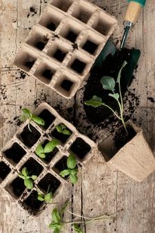 Крупным планом на процесс пересадки растений