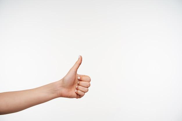 긍정적 인 제스처를 보여주는 동안 젊은 예쁜 여자의 손이 제기되고 닫습니다