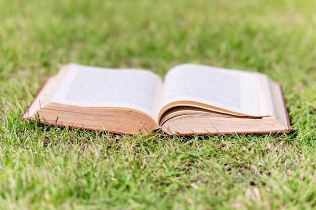 Крупным планом открытая книга в траве на поле в летний сезон природы