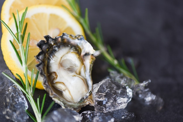 Close up open oyster shell with herb spices lemon rosemary served table and ice healthy sea food raw oyster dinner in the restaurant gourmet food. fresh oysters seafood on black plate