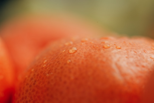 Close up orange with small water droplets on the peel