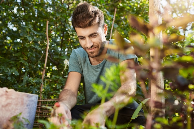 Close up outdoors portrait of happy mature bearded caucasian man smiling, working in garden near countryside house, picking berries, getting ready for healthy breakfast.