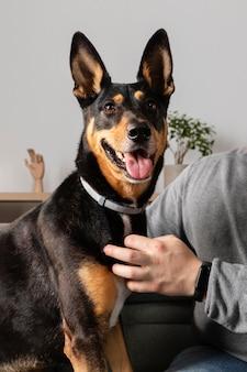 かわいい犬と一緒に所有者をクローズアップ
