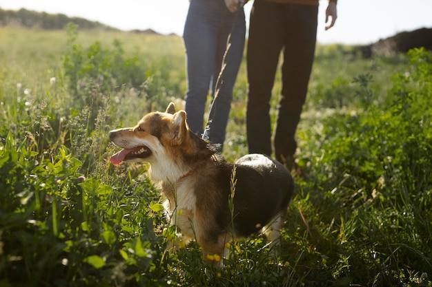 Proprietari ravvicinati con un cane carino