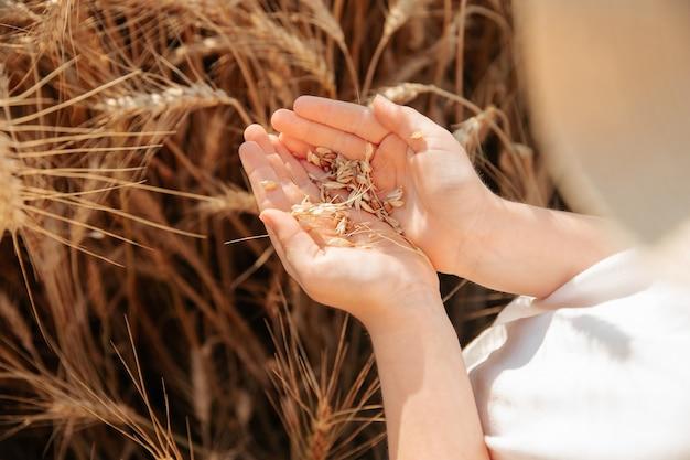 Крупным планом ладонь руки маленькой девочки с зернами пшеницы вид сверху фото девушки с пшеницей в ее ха ...