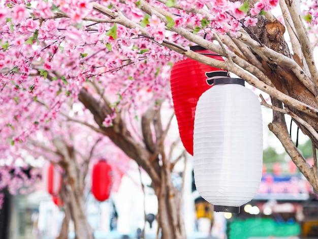 ピンクの桜の花を背景に庭の屋根の下にぶら下がっている提灯を閉じます。公園で中国の旧正月の装飾。