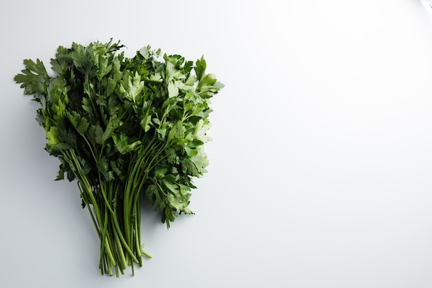 Close up on parsley bunch isolated