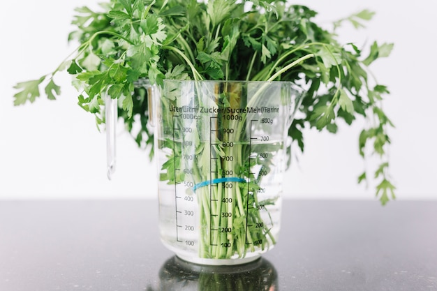 Close-up of parsley in measuring jar