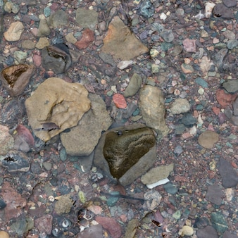Close-up of pebbles in shallow water, fundy national park, alma, new brunswick, canada
