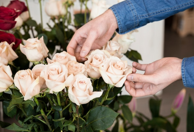 Close-up of a person's hand touching the roses