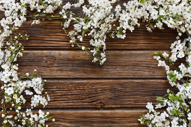 Close-up photo of beautiful white flowering cherry tree branches heart shape