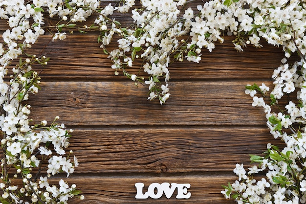 Close-up photo of beautiful white flowering cherry tree branches with white letters love.