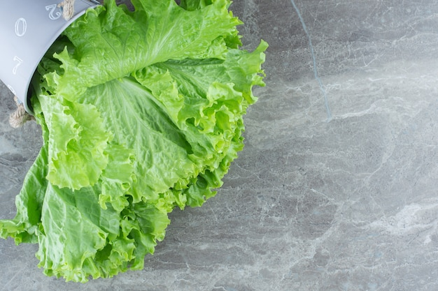 Close up photo of fresh green lettuce leaves.