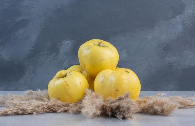 Close up foto di mele cotogne organiche mature fresche su sfondo grigio.