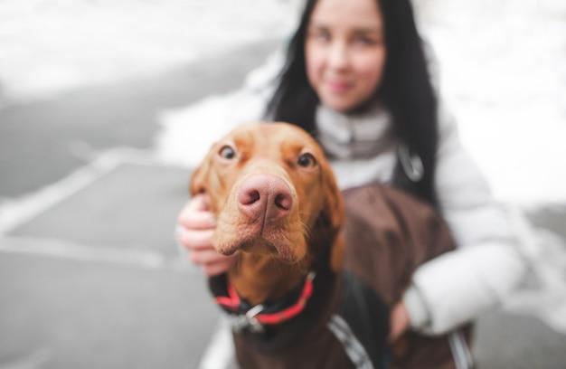 Крупным планом фото коричневой милой собаки, одетой в собачью одежду, и девушки, улыбающейся домохозяйки