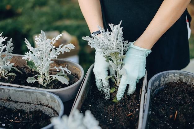 裏庭で手袋をはめて花を植える白人女性のクローズアップ写真