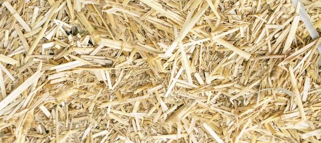 Крупным планом фото много мелкой соломы, текстура сена, background image