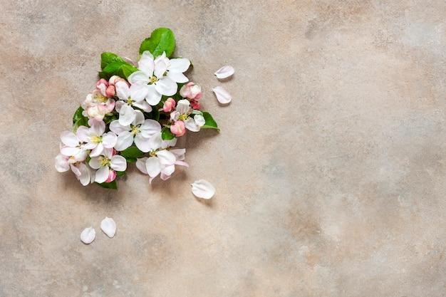 美しい白い開花リンゴの木の枝のクローズアップ写真。