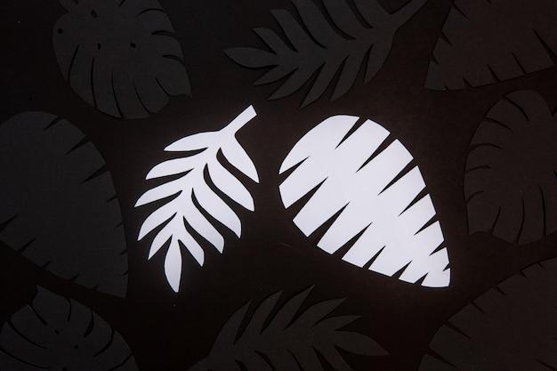 背景にカットされた黒と白の紙の写真をクローズアップ。リアルな熱帯植物の葉の形の紙カット装飾。