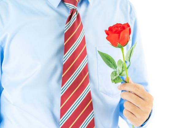 Крупным планом фото человека, держащего красные розы в руке на белом фоне