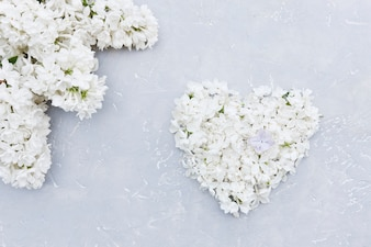 Close-up photo of white flowers heart shape