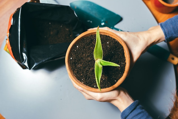 新鮮な土壌、ガーデニングのコンセプトで植木鉢を保持している女性の写真を閉じます。植物の世話をする