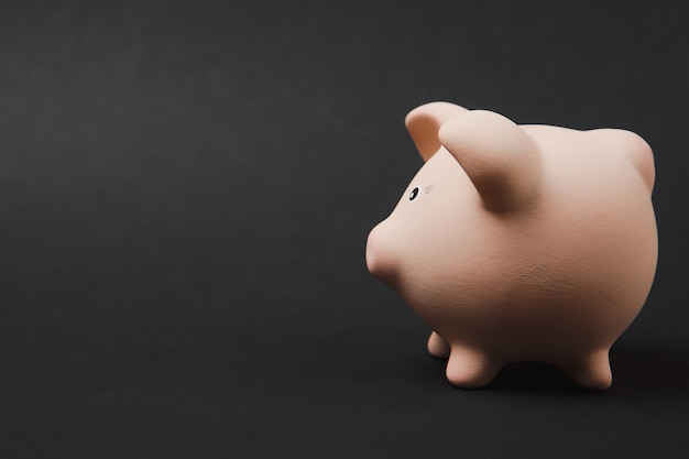 Close up photo, side view of pink piggy money bank isolated on black wall background. money accumulation, investment, banking or business services, wealth concept. copy space advertising mock up.