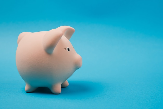 Close up photo side view of pink piggy money bank isolated on bright blue wall background. money accumulation, investment, banking or business services, wealth concept. copy space advertising mock up.