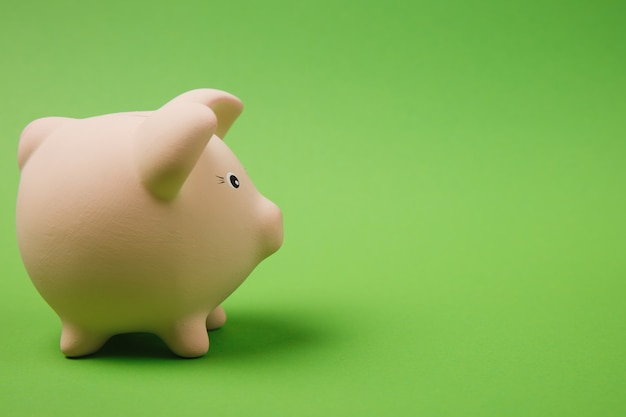 Close up photo side view of pink piggy money bank isolated on bright green wall background. money accumulation investment, banking or business services, wealth concept. copy space advertising mock up.