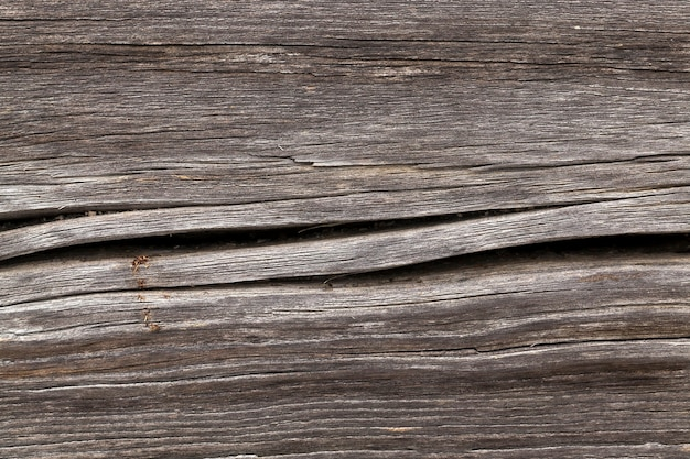 A close-up photograph of a damaged wooden surface that is the wall of a house in the village. cracks and decay of boards