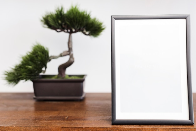 Close-up picture frame with bonsai