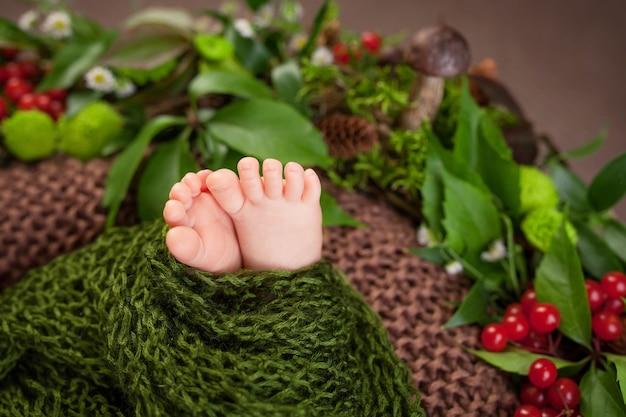 니트 격자 무늬와 꽃, 딸기, 버섯에 새로 태어난 아기 발의 사진을 닫습니다.