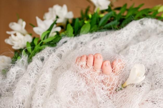니트 격자 무늬와 꽃에 새로 태어난 아기 발의 사진을 닫습니다