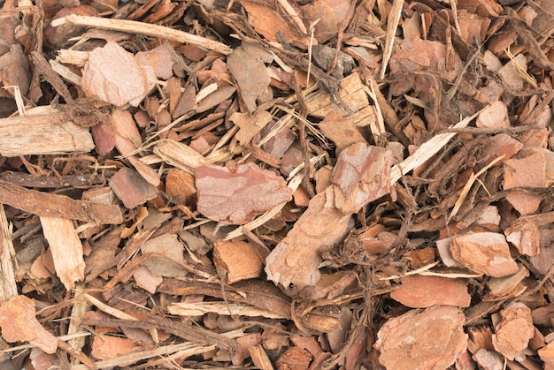 Close up on pine bark chips texture details