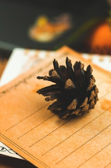 Close up of pine cone, cozy winter and autumn photo with warm tones, postcard and decoration, vertical composition. high quality photo