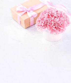 Close up of pink carnation on white marble background for mother's day fower
