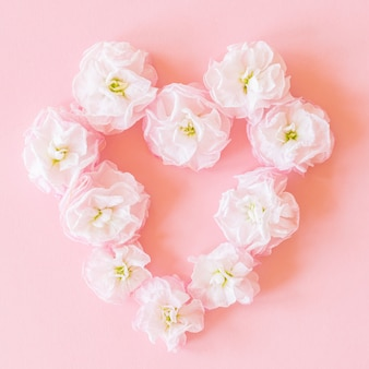 Close up of pink heart made of matthiola flowers on pink background. flower arrangement.