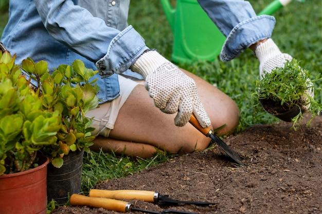 토양에 꽃 심기를 닫습니다