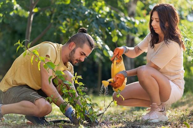 Primo piano sulla piantagione di nuove piante in natura