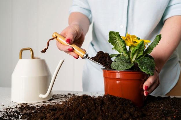 토양에 심기 식물 전구를 닫습니다