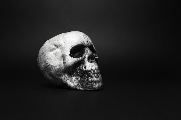 Close-up portrait of anatomical human spooky skull, on background of black color with copy space.