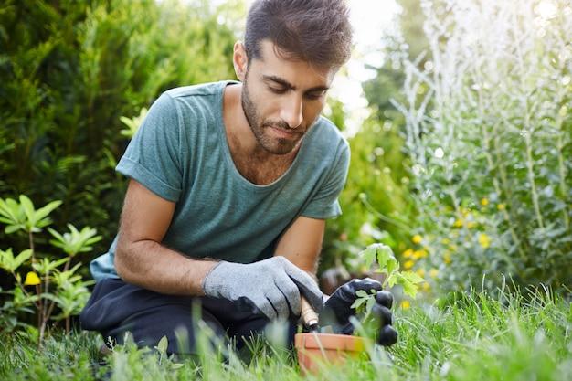 Chiuda sul ritratto di bello giardiniere maschio ispanico barbuto concentrato piantare germogli in vaso di fiori con attrezzi da giardino, godendo di momenti di silenzio.