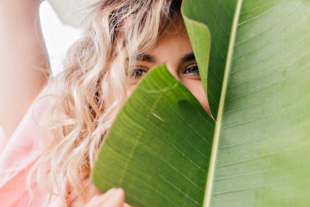 Ritratto del primo piano della ragazza dagli occhi azzurri che propone allegramente con la pianta. affascinante signora bionda timida che nasconde il viso dietro la foglia verde.