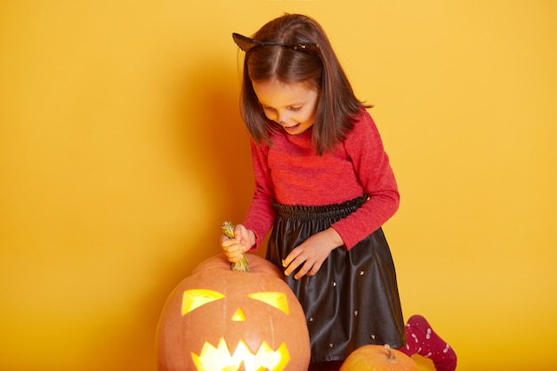 Close up portrait of cute little girl wearing cat costume, posing with pumpkins, looking down on her jack o'lantern, celebrating halloween