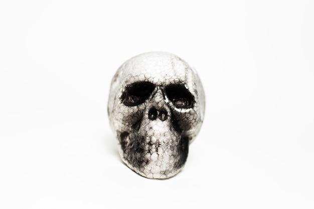 白い色の背景に、解剖学的な人間の不気味な頭蓋骨のクローズアップの肖像画。