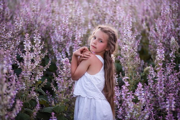 Крупным планом портреты маленькой девочки с длинными распущенными волосами в цветущем розовом поле шалфея.