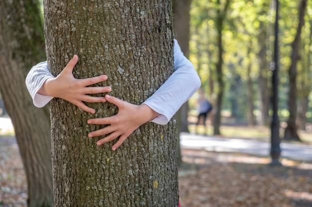 Close up of protective child hands embracing tree trunk in summer park. care about nature concept.